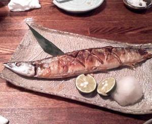 初 秋刀魚
