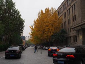 西安豪华美居人民大厦 Sofitel Xian on Renmin Square